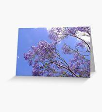 Jacaranda Blue  Greeting Card