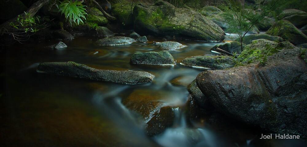Glenbrook Creek by Joel  Haldane