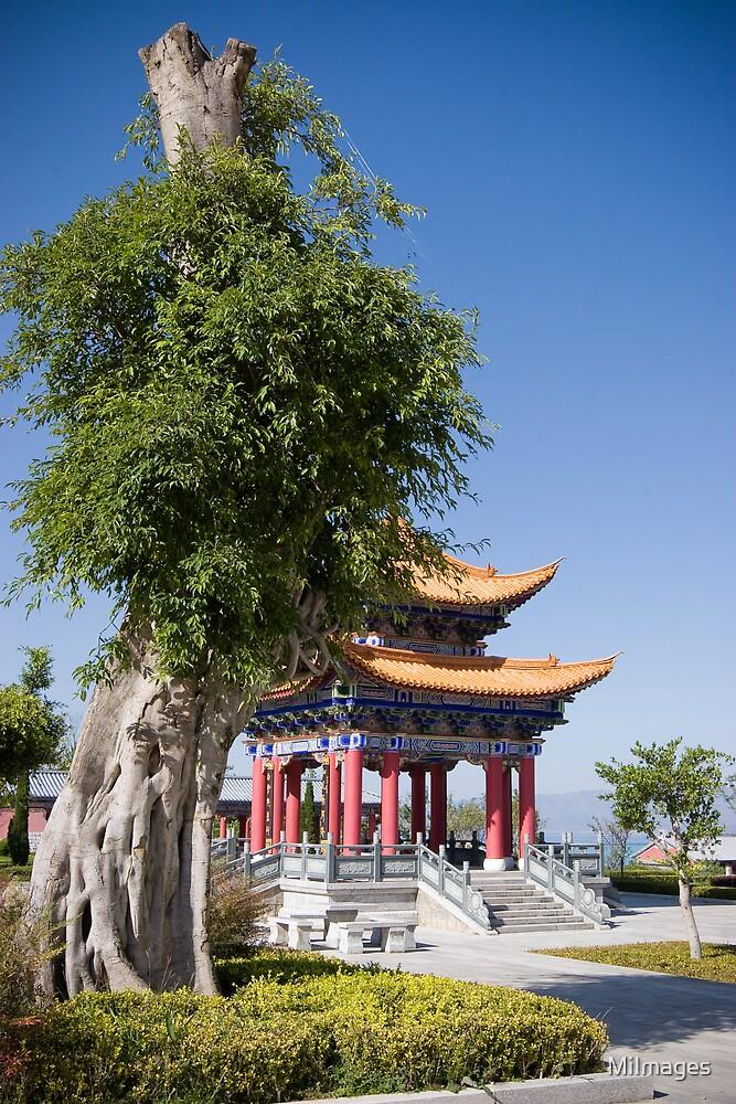 Dali Chongshen Monastery Yunan Province China by MiImages