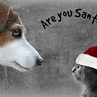 Are You Santa? by Ladymoose