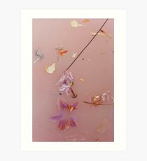 Harry Styles - pink flowers Art Print