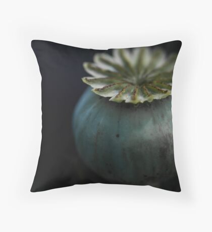 Patterns in Nature - The Poppy Throw Pillow