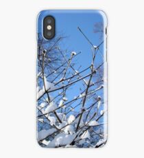 Snowy branches in Central Park iPhone Case/Skin