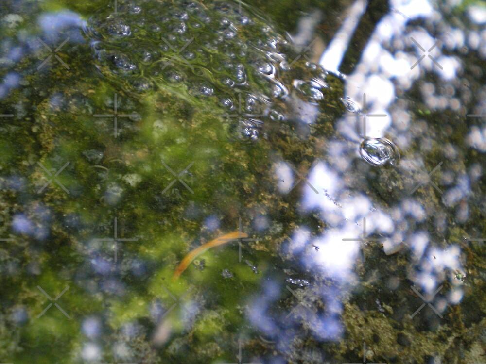 Watery Green by Rebekah  McLeod