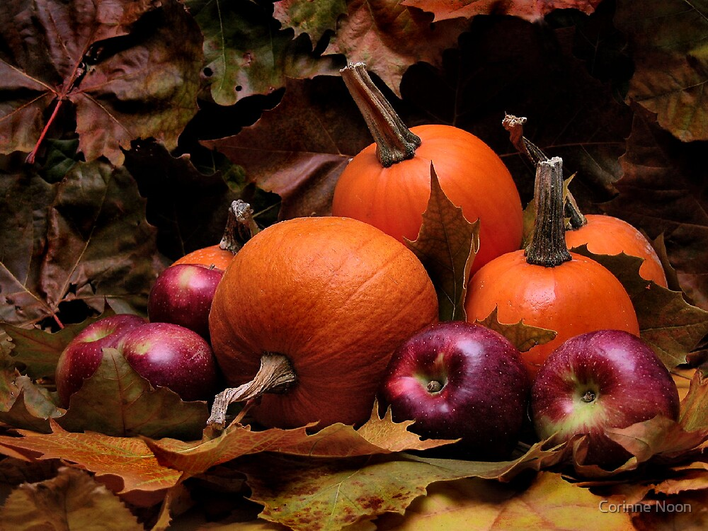 Harvest Beauty by Corinne Noon