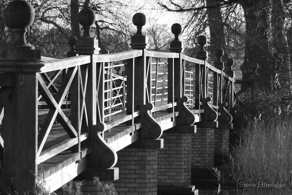 Wimpole Hall, near Royston UK '08 by Steve Etheridge