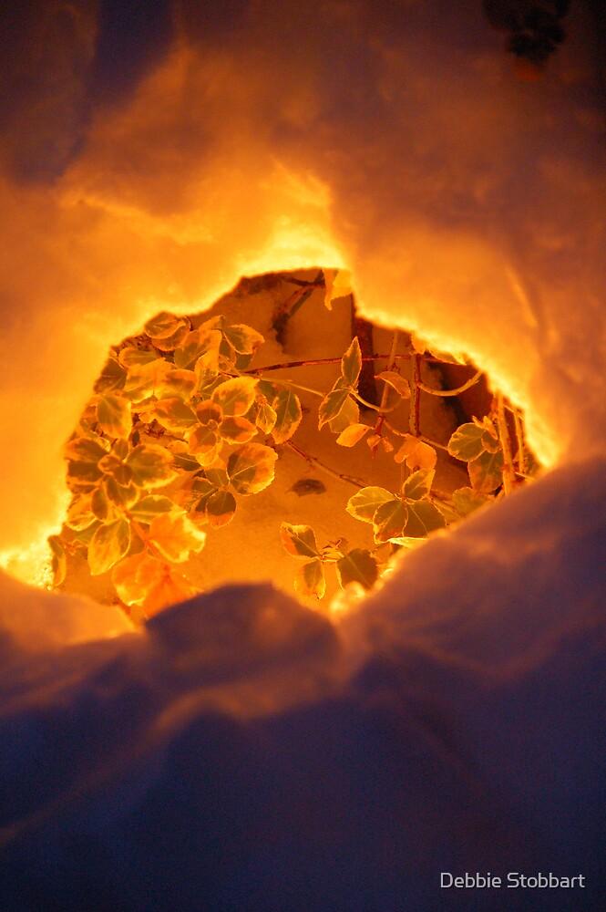 Snow Glow by Debbie Stobbart