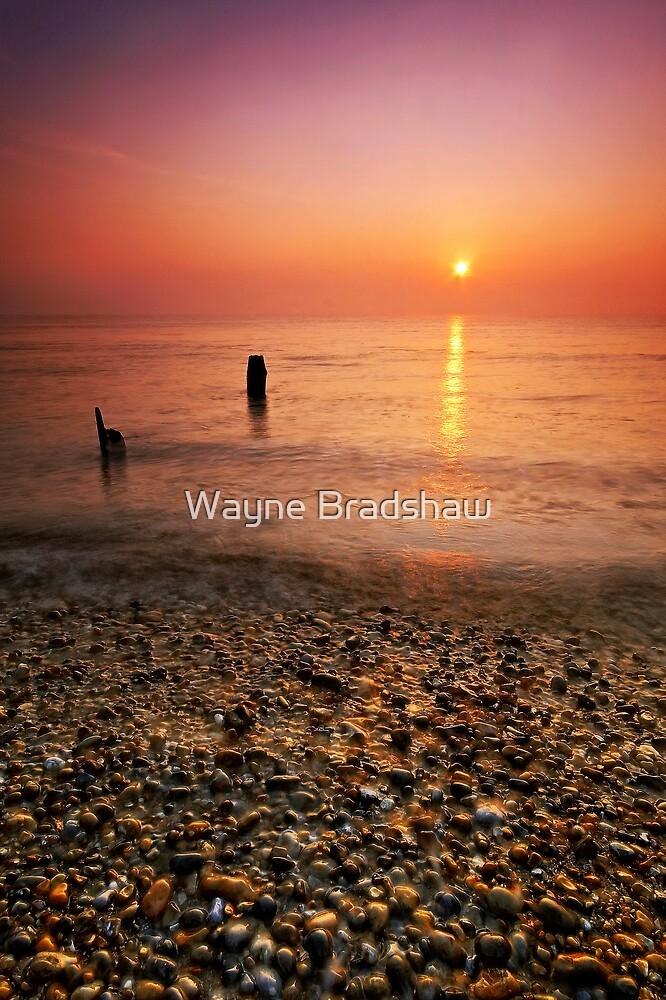 Aldeburgh Beach Suffolk 11. by Wayne Bradshaw
