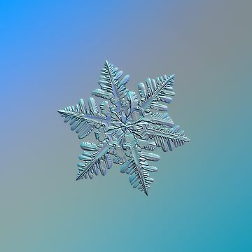 Real snowflake - 13 February 2017 - 5 alt by chaoticmind75