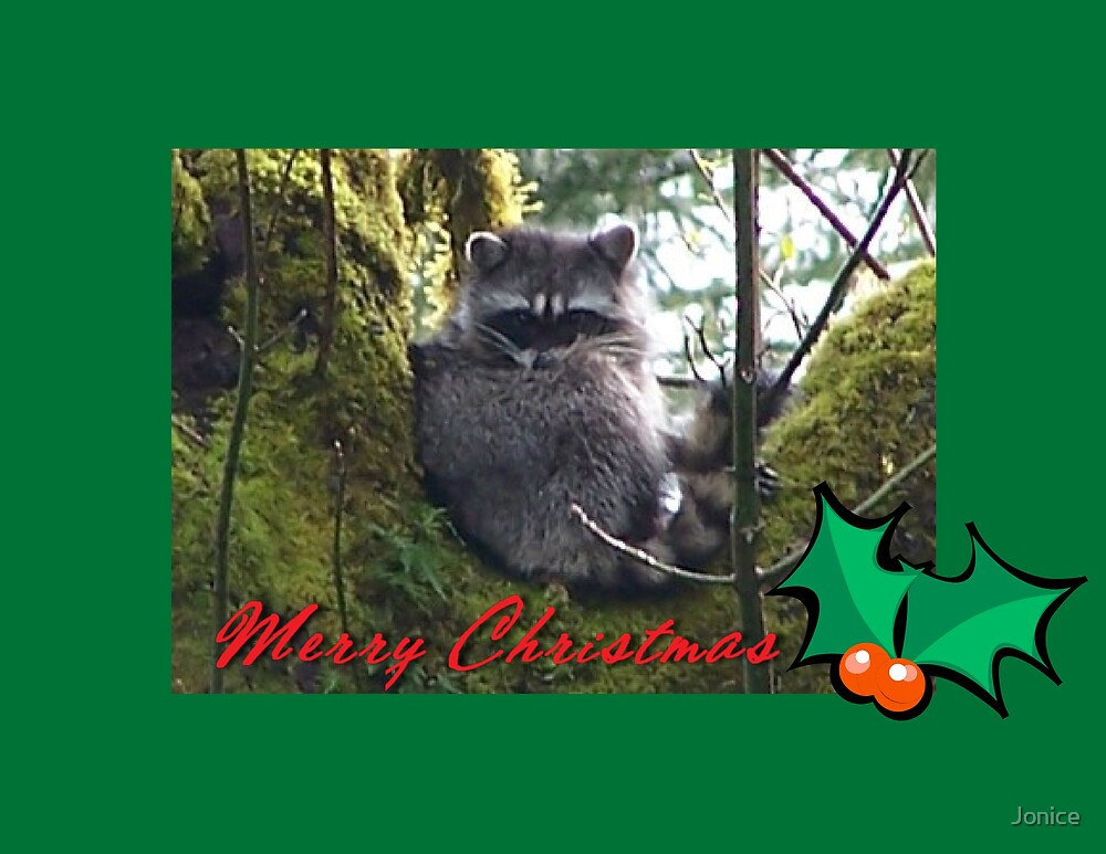 Raccoon Merry Christmas by Jonice