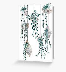 Hanging plants in seashells  Greeting Card