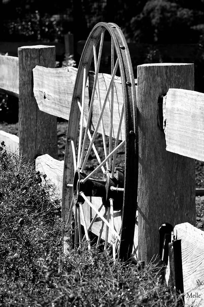 Wagon Wheel by Melle