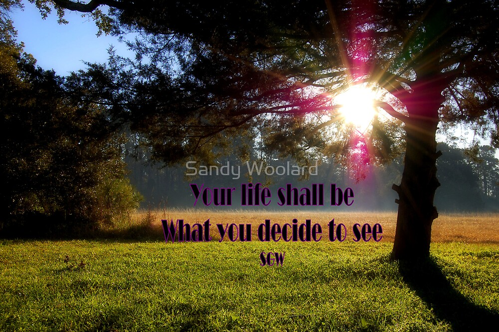 Life as you see it by Sandy Woolard