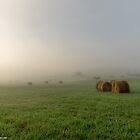 Foggy Mountain Morning by DanGirardPhotos