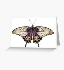 Butterflies fond flowers white and purple Greeting Card