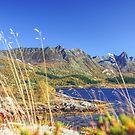 Exploring the Fjord von nurmut