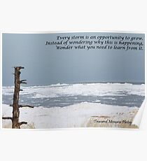 Every storm is an opportunity Poster