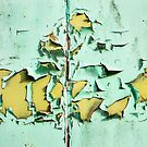 Blistered Paint by Dave Hare