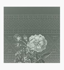 Flower - Argyle 3 Photographic Print