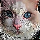 Look Into My Eyes by Bunny Clarke