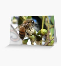 Bee VI Greeting Card