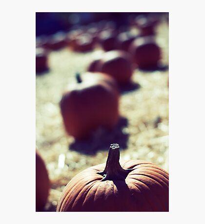 Fading Pumpkins Photographic Print