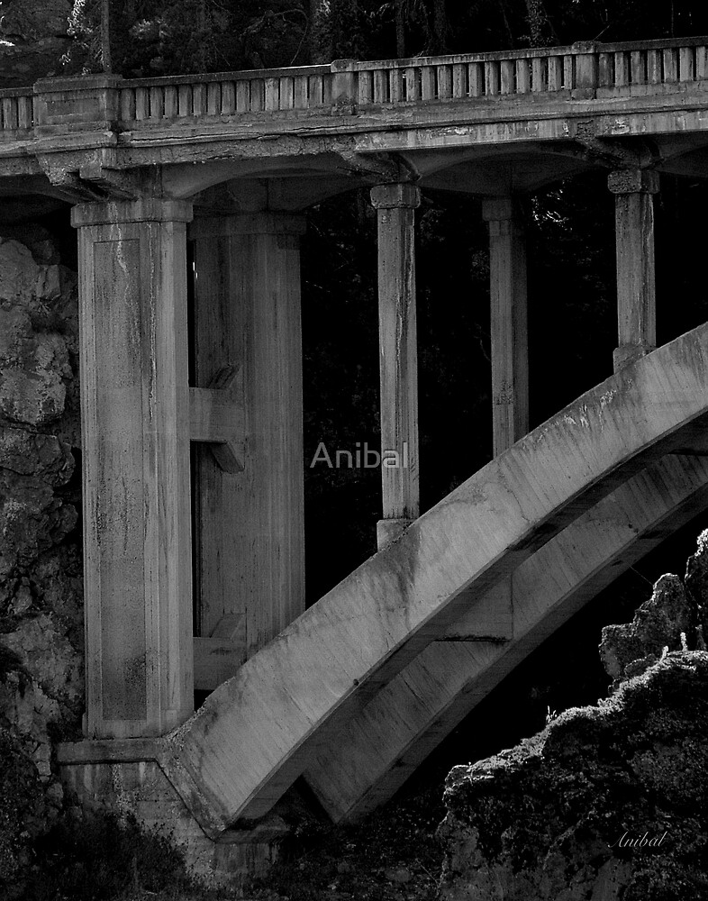 Bridge Over Troubled Waters... by Anibal