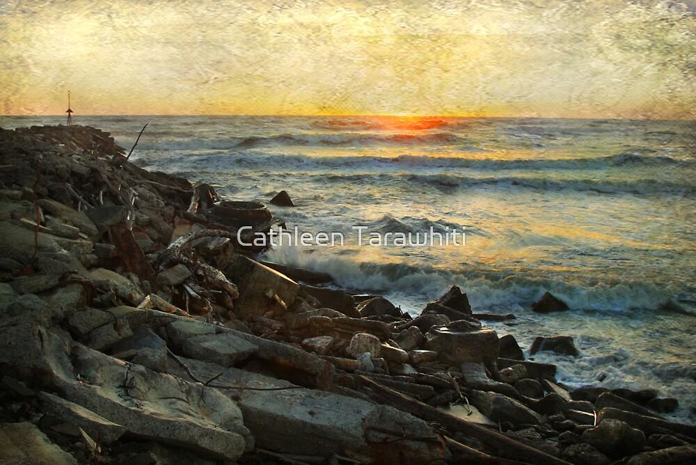 The Point by Cathleen Tarawhiti