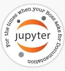 Endless Jupyter Sticker