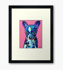 Cute BOSTON TERRIER CHIHUAHUA puppy Framed Print