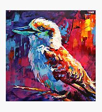 Kookaburra sits in the old gum tree... Photographic Print