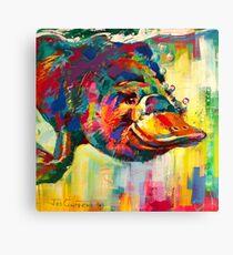 Duck-Billed Platypus - Australian mammal Canvas Print