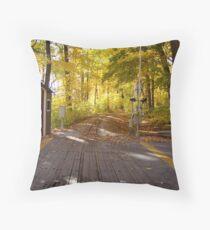 Fall colours. Throw Pillow