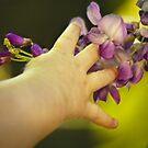 Springtime by ChrisHopkins