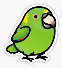 Yellow-naped Amazon Sticker