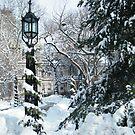 City Hall Park in Snow, New York by lenspiro