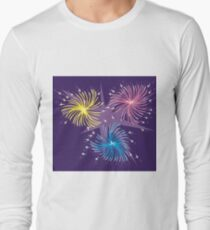 Fireworks Display T-Shirt