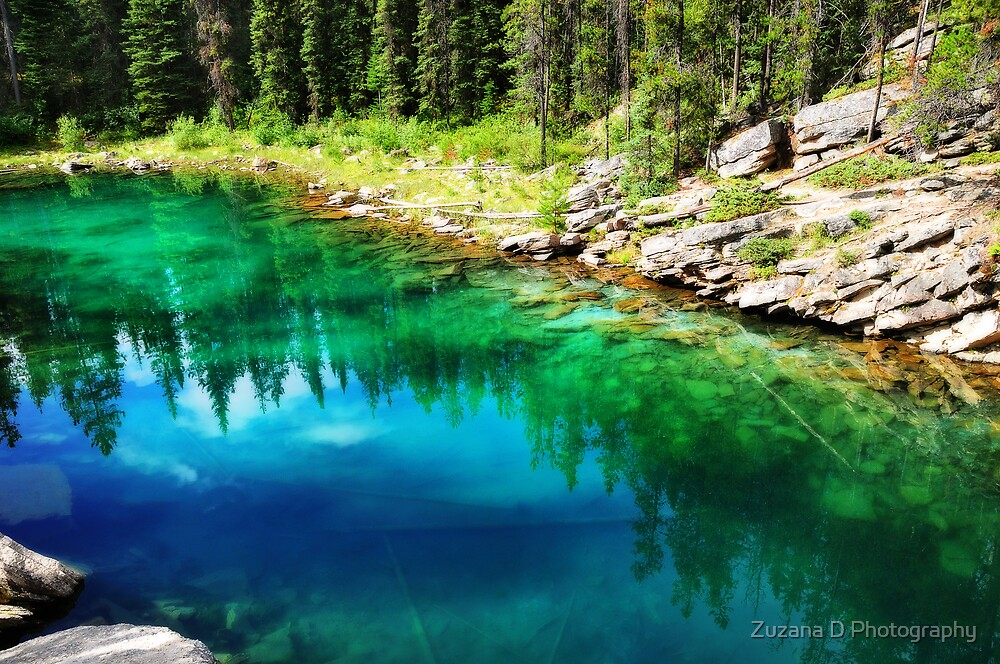 The Emerald Lake by Zuzana D Photography