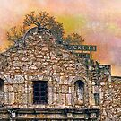 Sunset Over the Alamo by Susan Werby