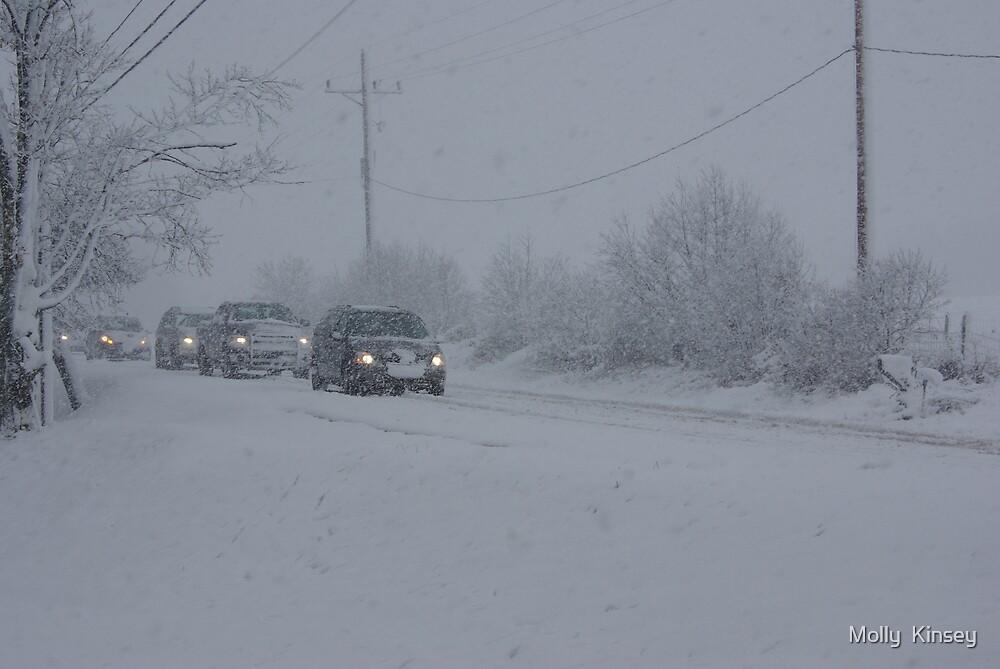 Stuck In Winter Traffic by Molly  Kinsey