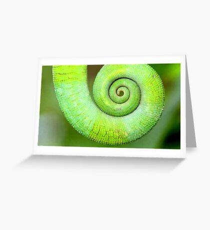 Spiral, Madagascar Greeting Card