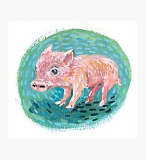 Piggie Photographic Print