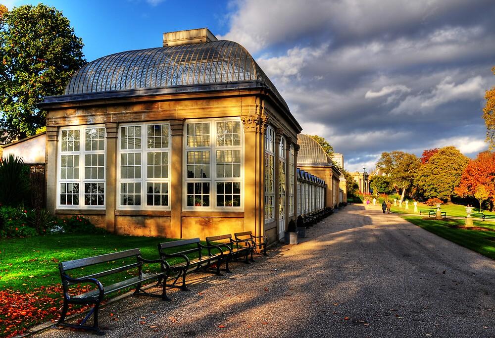 The Glasshouse by Simon Hughes