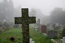 Misty Morning in the Graveyard by DonDavisUK