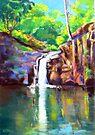 Waterfall Victoria Park  Alstonville NSW by Virginia McGowan