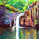 Waterfall Victoria Park  Alstonville NSW by Virginia McGowan