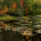 Autumanl Panorama by TingyWende
