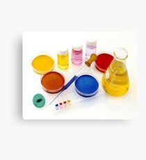 lab tools, products and chemicals on white background Canvas Print