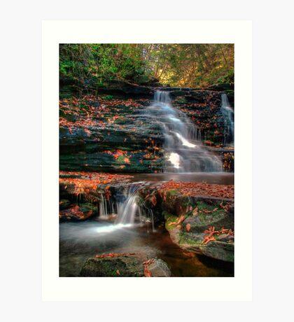 Delaware Falls Art Print