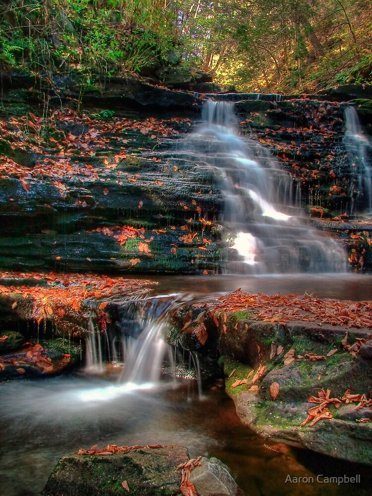 Delaware Falls by Aaron Campbell
